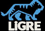 LiGRE Knowledge Base